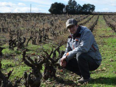 Hors-vendanges, les tâches à effectuer sur les vignes étant beaucoup plus techniques, Thibaud Vermillard préfère embaucher des salariés qualifiés.