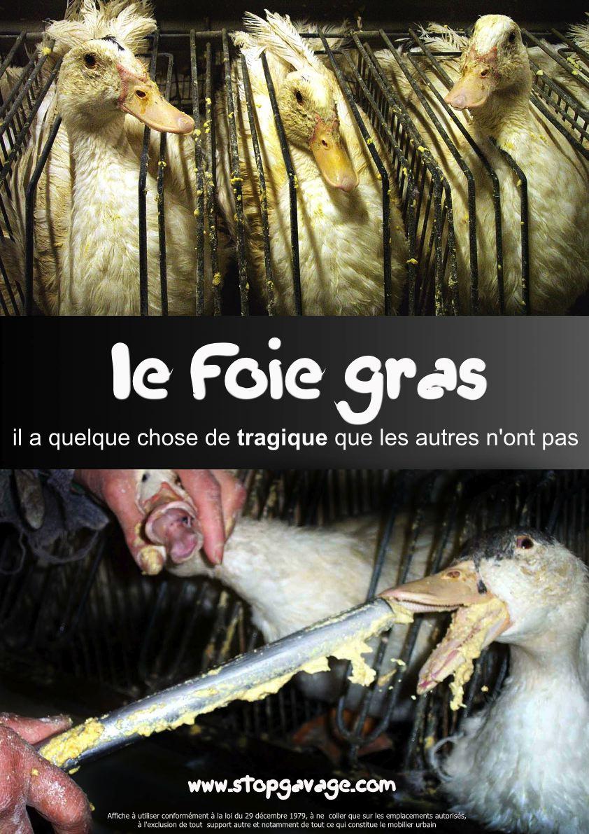 La campagne choc des militants anti-foie gras fait étape à Montpellier