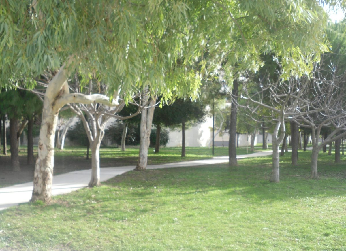 Montpellier, une ville à la main verte ?