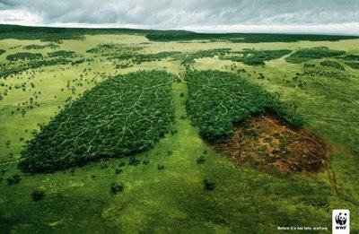 Le Sénat brésilien risque d'étouffer le « poumon vert » de la planète