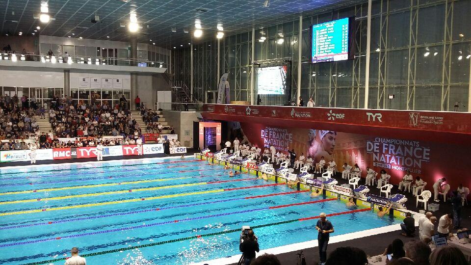 NATATION – Championnats de France 25m : résultats #J1