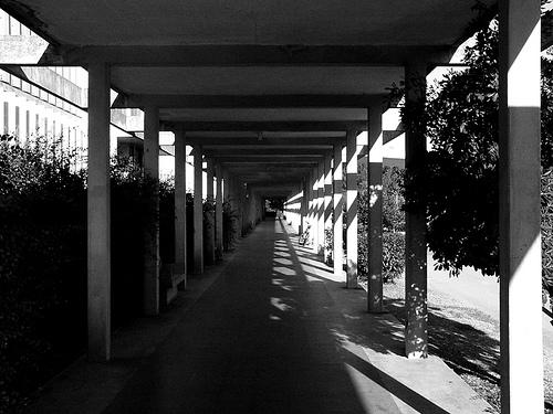 L'Université Montpellier 2 est mal adaptée aux étudiants handicapés