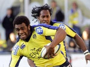 La paire d'ailliers fidjien de Clermont