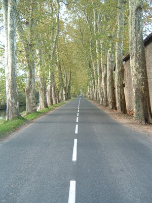 Un Audois en croisade pour la sécurité routière