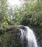 Des centaines d'agriculteurs ont contaminé sans le savoir les terres bananières, les rivières, les sources et, par extension, l'eau potable.